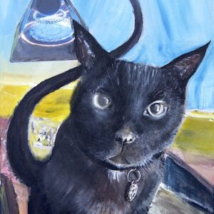 Orgone the Cat